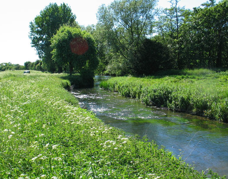 The Mill Straight in high summer