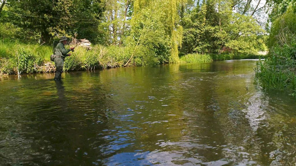Chalk Stream fly fishing on the River Wensum